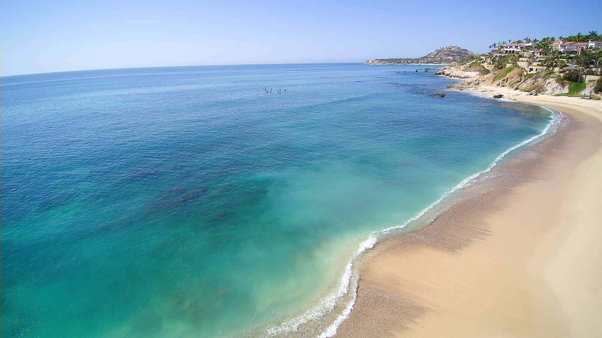Bienvenido a High Tide Los Cabos