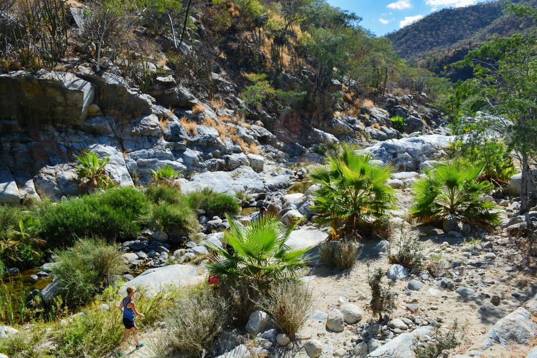 Hiking day tour in Fox Canyon near Los Cabos with High Tide adventure tours